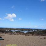 Sharks Cove – Schnorcheln in Mitten von Haien?