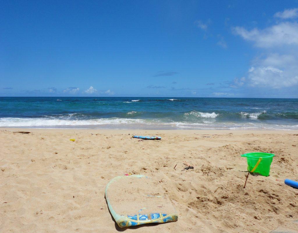 HawaiianLife