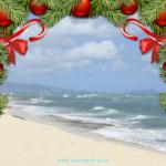 Vorweihnachtsspecial – 4 Monate Weihnachten auf Hawaii