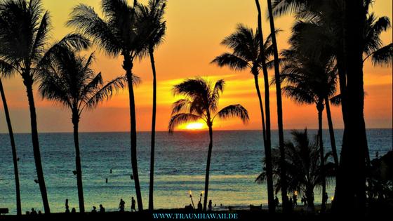 Jahr 2018 - Aloha