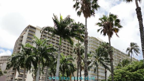 Geschichte von Hawaii