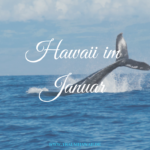 Hawaii im Januar