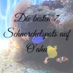 Die besten 7 Schnorchelspots auf O'ahu