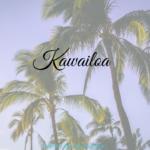 Kawailoa – Waldschutzgebiet? Strand? Oder doch beides?